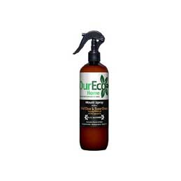 Mould Spray – 500ml